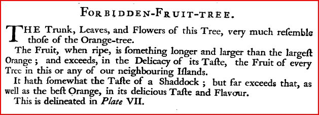 forbiddenfruit1750barbados